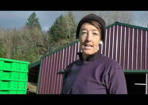 Reusable Totes at Fiddlehead Farm